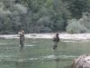 Fischen Slowenien 2010